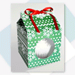 Treat Box-Green Snowflake