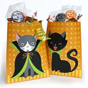 Halloween Cat Treat Bag